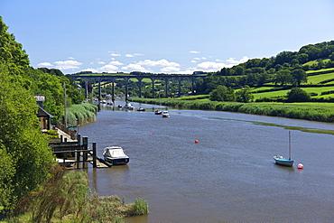 Calstock railway viaduct over the River Tamar, Cornwall, England, United Kingdom, Europe