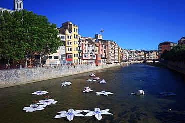 River Onyar during the flower festival, Girona, Catalonia, Spain, Europe