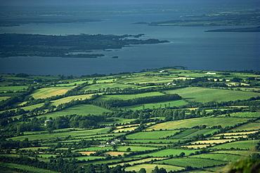 Leitrim, Daura, Shannon River, County Leitrim, Connacht, Republic of Ireland, Europe