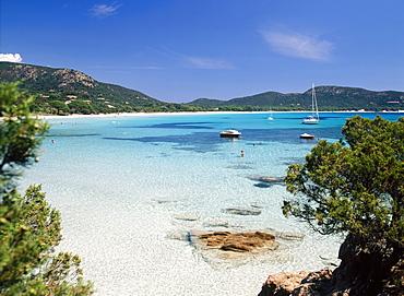 Palombaggia Beach, Porto Vecchio, Corsica, (France)