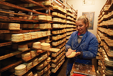 Munster cheeses, Alsace, France, Europe