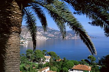 Cap Ferrat, Alpes-Maritimes, Cote d'Azur, Provence, France, Mediterranean, Europe