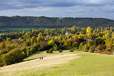 Autumn view north along the Burford Spur of Box Hill, Surrey HIlls, North Downs, Dorking, Surrey, England, United Kingdom, Europe