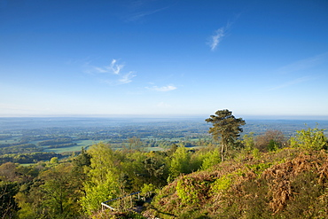 Leith Hill, highest point in south east England, view south towards The South Downs on a spring morning, Surrey Hills, Greensand Way, Surrey, England, United Kingdom, Europe