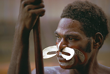 Portrait of a tribesman with large nose ornament, Irian Jaya (West Irian) (Irian Barat), New Guinea, Indonesia, Asia