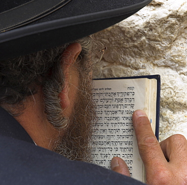Close up of an Orthodox Jew holding prayer book against the wall and praying, Western Wall, Jerusalem, Israel, Middle East