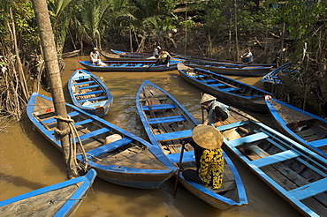Navigating the waterways amid coconut palm trees, Tortoise Island, near My Tho, Mekong delta, Vietnam, Indochina, Southeast Asia, Asia