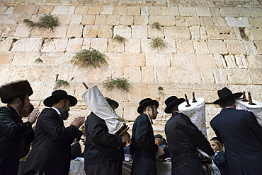 Orthodox Jews dancing with Torah scrolls during Simhat Torah festival, Western Wall, Jerusalem Old City, Israel, Middle East