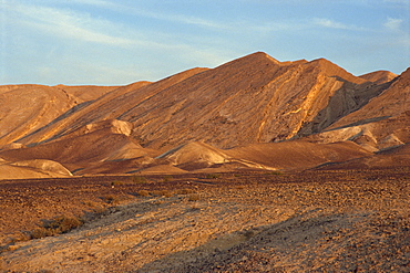 Rocky plain and hills in the background in the Negev Desert, Israel, Middle East