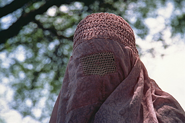 Portrait of a veiled Muslim woman in northern Pakistan, Asia