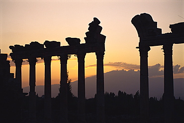 Columns in public building, probably the Court of Justice, Baalbek, UNESCO World Heritage Site, Lebanon, Middle East