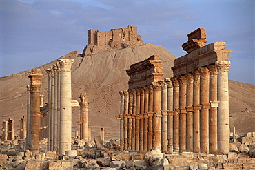 The Great Colonnade, with Arab castle on hill in background, Palmyra, UNESCO World Heritage Site, Syria, Middle East