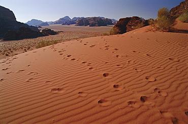 Footsteps, desert scenery, Wadi Rum, Jordan, Middle East