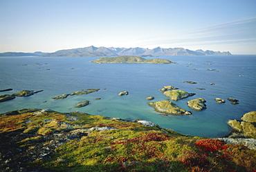 Autumnal bloom, Senja vewied from Sommeroy (Summer Isle), near Tromso, Arctic Norway, Norway, Scandinavia, Europe