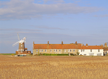 Reedbeds and Cley windmill, 18th century tower windmill on old quay, Cley-next-the-Sea, Norfolk, England, UK, Europe
