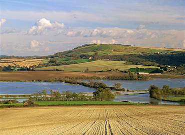Arun Valley in food, with South Downs beyond, Bury, Sussex, England, United Kingdom, Europe