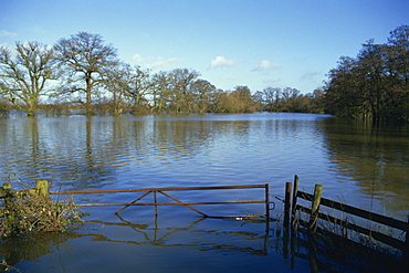 Flooding of fields from River Severn near Tirley, Gloucestershire, England, United Kingdom, Europe