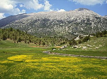 Springtime in the hills near Guzelyurt, south of Nevsehir, Anatolia, Turkey, Asia Minor, Eurasia