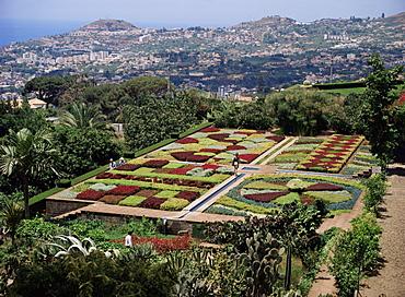 Botanical Gardens, Quinta de Bom Sucesso, Funchal, Madeira, Portugal, Europe