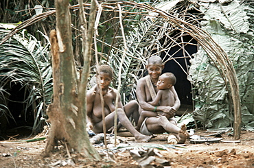 Pygmy women and children outside huts, Central African Republic, Africa
