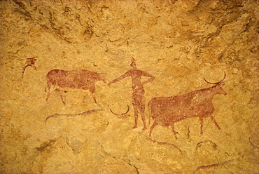 Painting with herdsman tending cattle on cave wall, Tassili Plateau, Algeria, North Africa, Africa - 6-2289