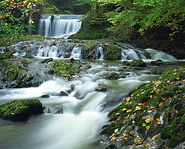 Stock Ghyll Beck, water in river tumbles over rocks, at Ambleside in the Lake District, Cumbria, England, United Kingdom, Europe