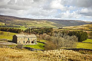 Swaledale, Yorkshire Dales, North Yorkshire, Yorkshire, England, United Kingdom, Europe
