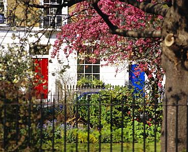 Markham Square, Chelsea, London, England, UK