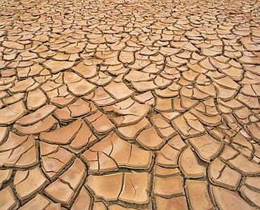 Arid landscape of dry cracked earth in a drought, South Australia, Australia, Pacific