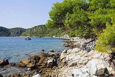 Near Agnotas, Skopelos, Sporades Islands, Greek Islands, Greece, Europe