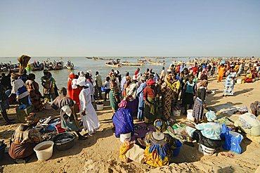 Mbour Fish Market, Mbour, Senegal, West Africa, Africa