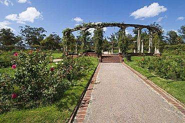 Rose Garden, Montevideo, Uruguay, South America