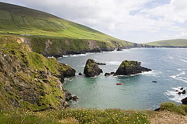 View from Slea Head Drive near Dunquin, Dingle Peninsula, County Kerry, Munster, Republic of Ireland, Europe