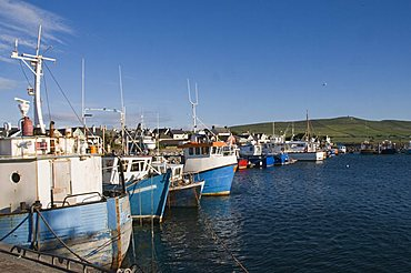 Dingle Harbour with fishing boats, Dingle, County Kerry, Munster, Republic of Ireland, Europe