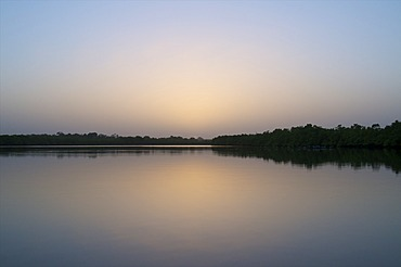 Mangroves at sunset, Gambia, West Africa, Africa