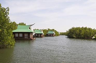 Mandina Lodge, Makasutu Forest, near Banjul, Gambia, West Africa, Africa