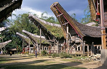 Typical Toraja houses and granaries, Toraja area, island of Sulawesi, Indonesia, Southeast Asia, Asia