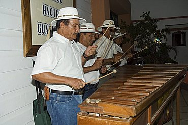 Musicians playing a type of xylophone, Hacienda Guachipelin, near Rincon de la Vieja National Park, Guanacaste, Costa Rica, Central America