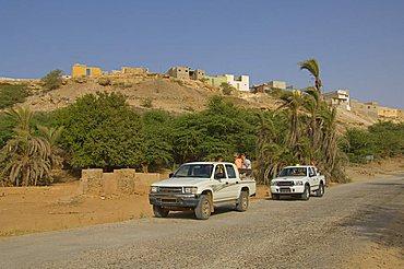 Oasis, Boa Vista, Cape Verde Islands, Africa