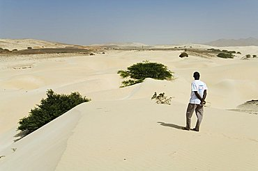 Desert and sand dunes in the middle of Boa Vista, Cape Verde Islands, Africa