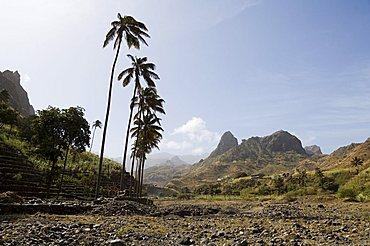 Near Ribiera Grande, Santo Antao, Cape Verde Islands, Africa