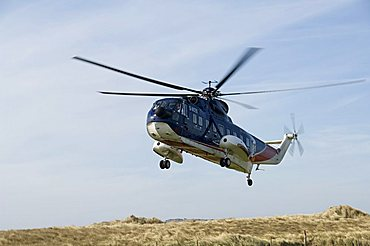 Helicoptor from Penzance, Tresco, Isles of Scilly, off Cornwall, United Kingdom, Europe