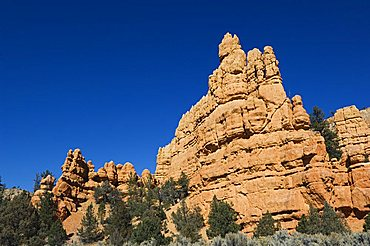 Red Canyon in Dixie National Forest, Utah, United States of America, North America