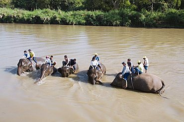 Tourists and elephants at the Anantara Golden Triangle Resort, Sop Ruak, Golden Triangle, Thailand, Southeast Asia, Asia