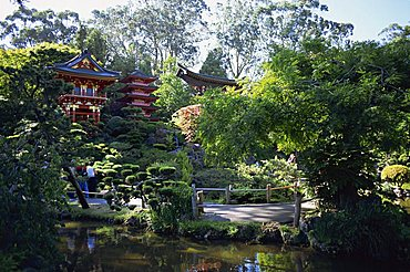 The Japanese Tea Garden in the Golden Gate Park, San Francisco, California, United States of America, North America