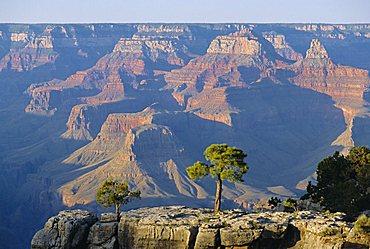 The south rim of the Grand Canyon, Arizona, USA