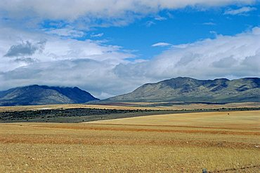 The Little Karoo, South Africa