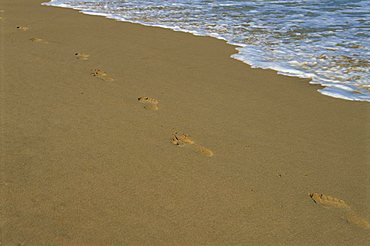 Footprints in the sand on a beach and water's edge
