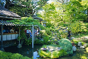 The Japanese Tea Garden, Golden Gate Park, San Francisco, USA