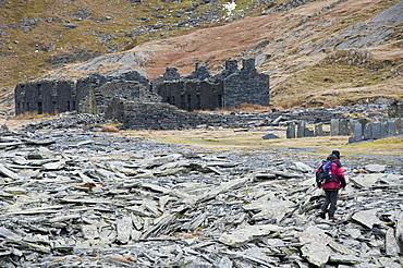A hiker walks through the abandoned Croesor Slate Mines, Croesor, Gwynedd, Snowdonia National Park, Wales, United Kingdom, Europe